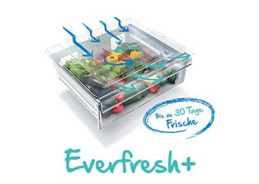 Beko Everfresh+