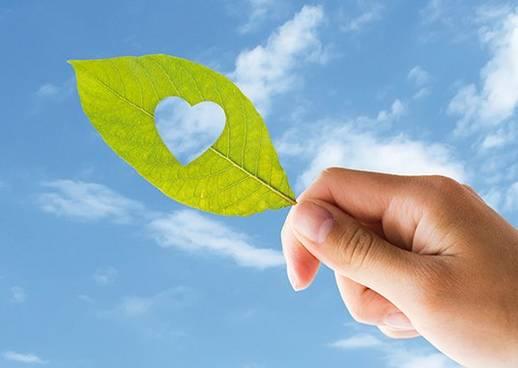 Geprüfte Paradies Qualität & Nachhaltigkeit