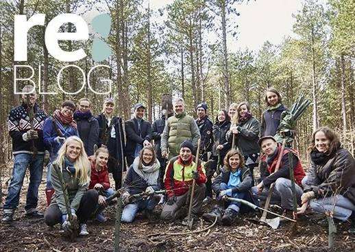 Amrum, re:BLOG, nachhaltige Waldbewirtschaftung