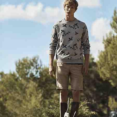 Herren: Sweatshirts & -jacken