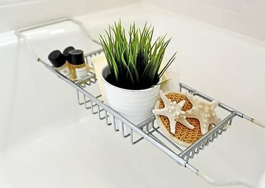 Tipp: Pflanzen fürs Badezimmer