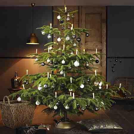 Weihnachtsdekoration: Weihnachtsbäume