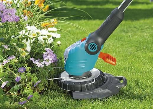 Gartentipps Rasenpflege