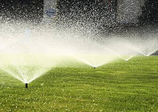 Den Garten richtig bewässern