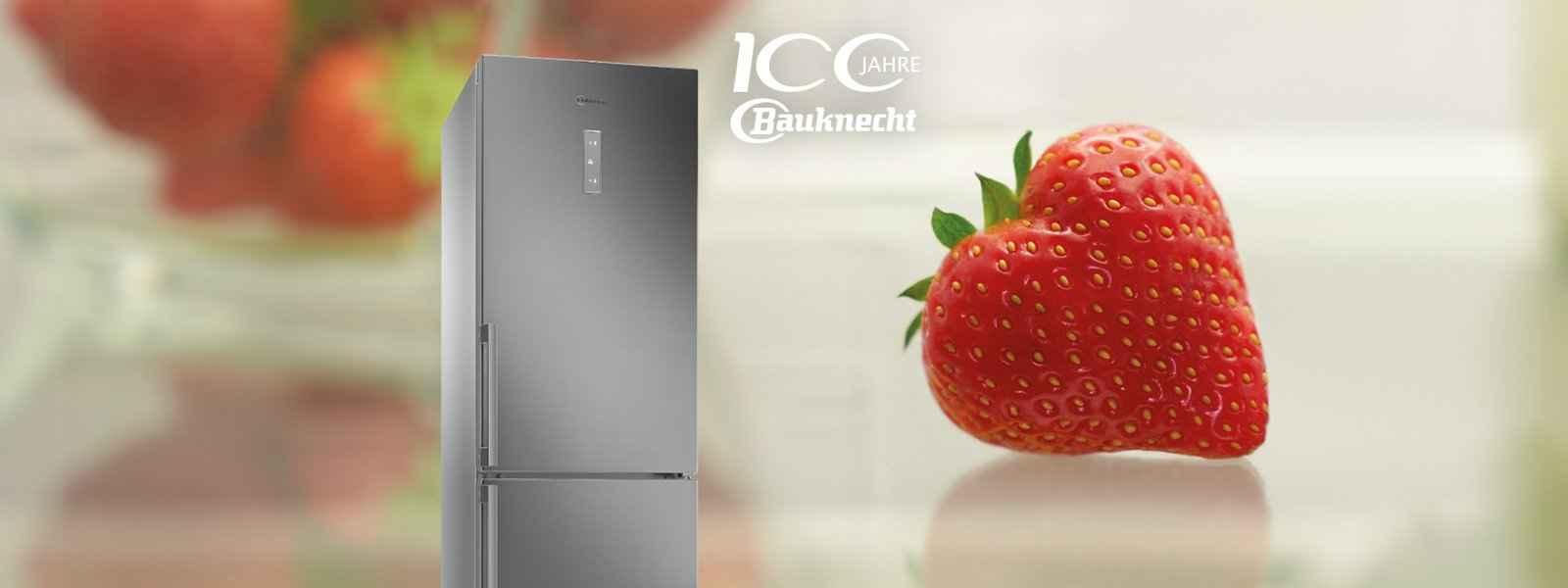 Bauknecht Kühlschränke