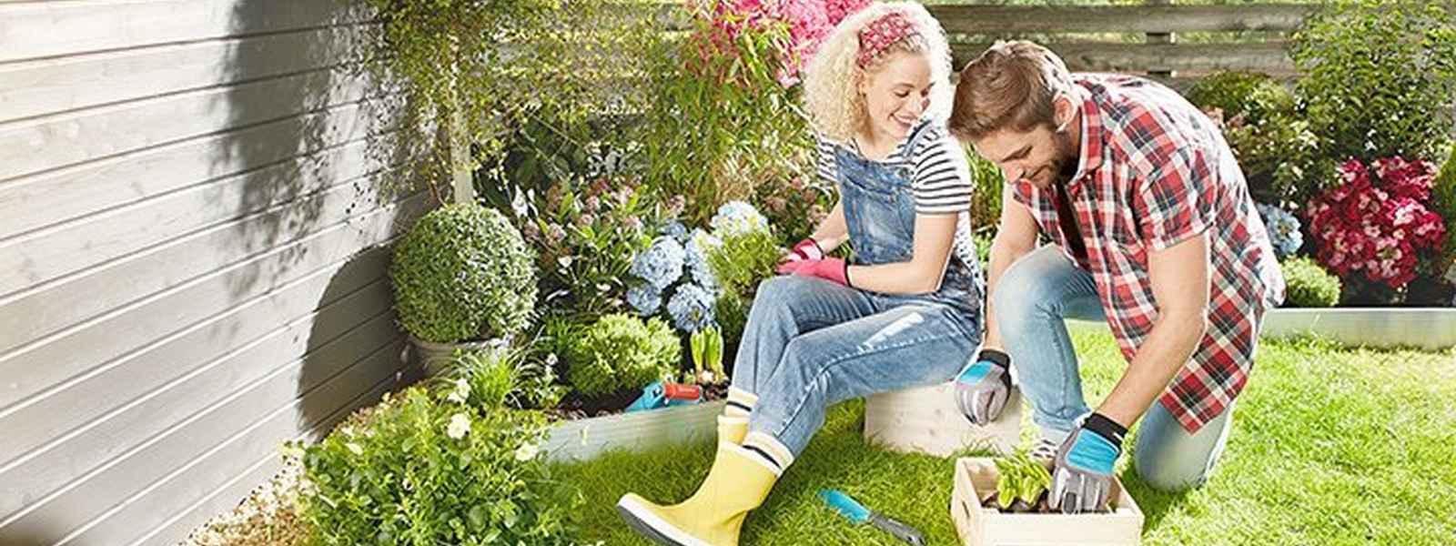 Beratung: Garten bepflanzen