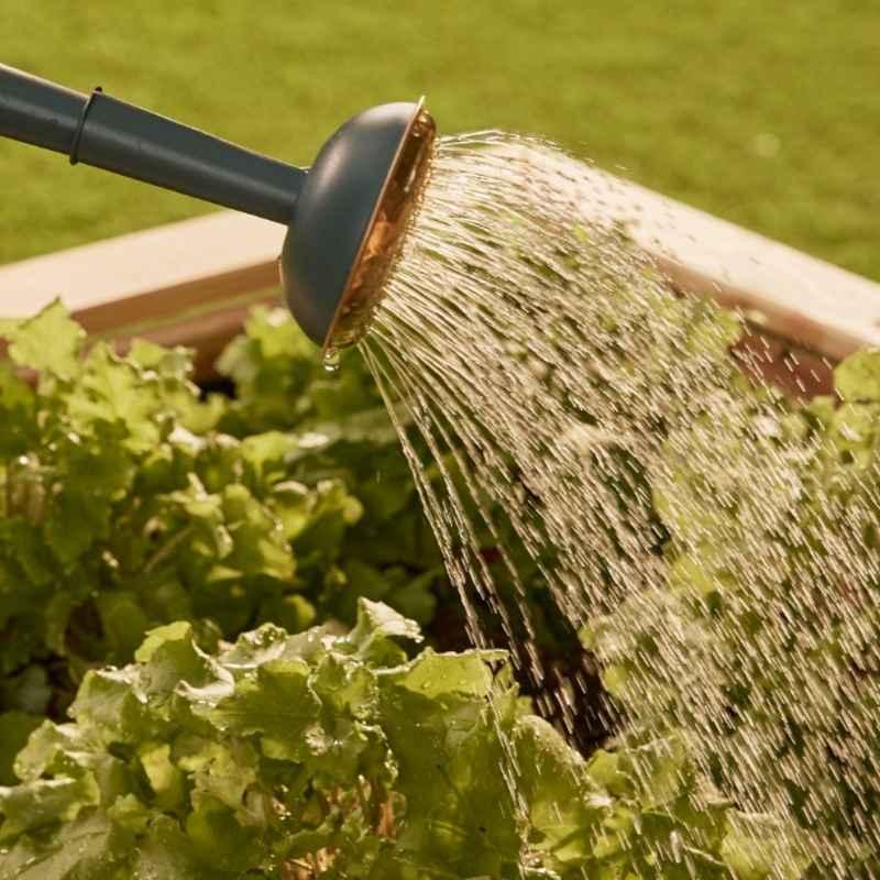 Nachhaltige Gartengestaltung