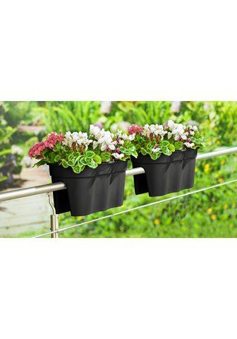 KHW Balkonkasten »Flowerclip XXL« (Set 2 v...