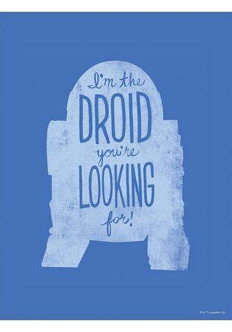 Komar Paveikslas »Star Wars Silhouette Quote...