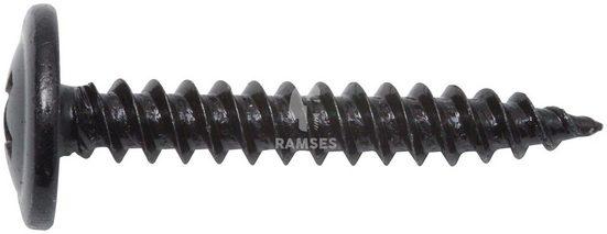 RAMSES Blechschraube, (Set, 100 St), 4,8 x 22 mm