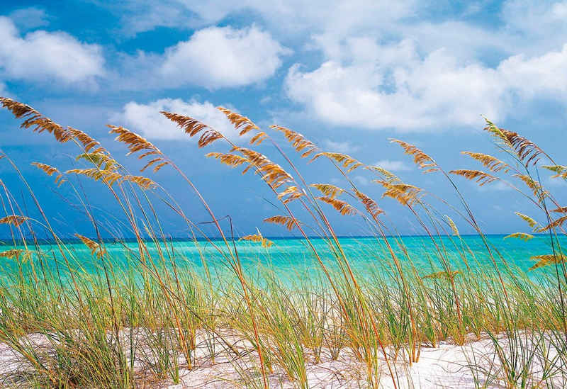 Komar Fototapete »Ocean Breeze«, glatt, bedruckt, Meer, Strand, (Set), ausgezeichnet lichtbeständig