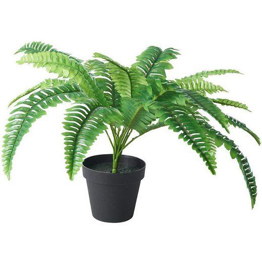 Kunstpflanze »Farn im Topf, H ca. 50cm«, Tawo