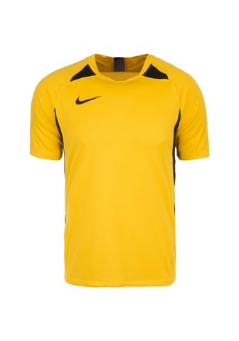 Nike Fußballtrikot »Dri-Fit Striker V«