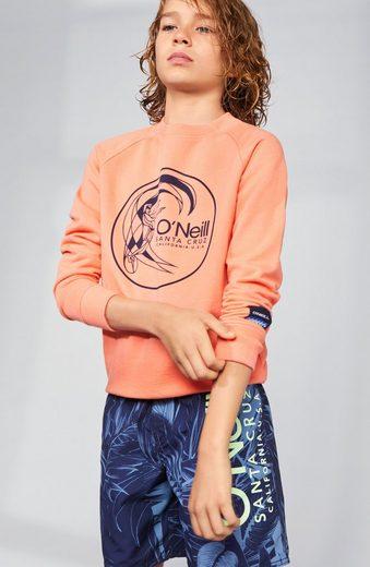 O'Neill Sweatshirt »Circle surfer«