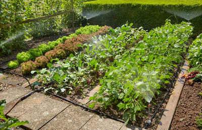 GARDENA Bewässerungssystem »Micro-Drip-System, 13015-20«, (Set, 39-tlg), Start-Set Pflanzflächen