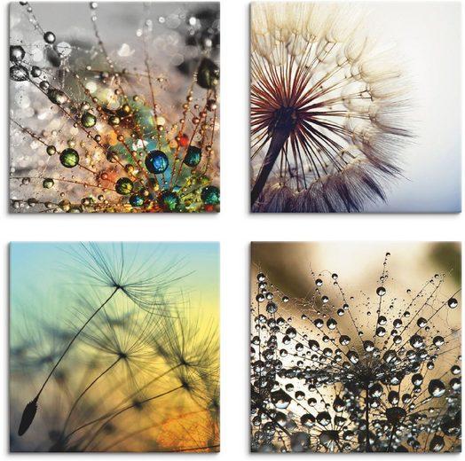 Artland Leinwandbild »Pusteblume,Nahaufnahme Löwenzahn«, Blumen (4 Stück)