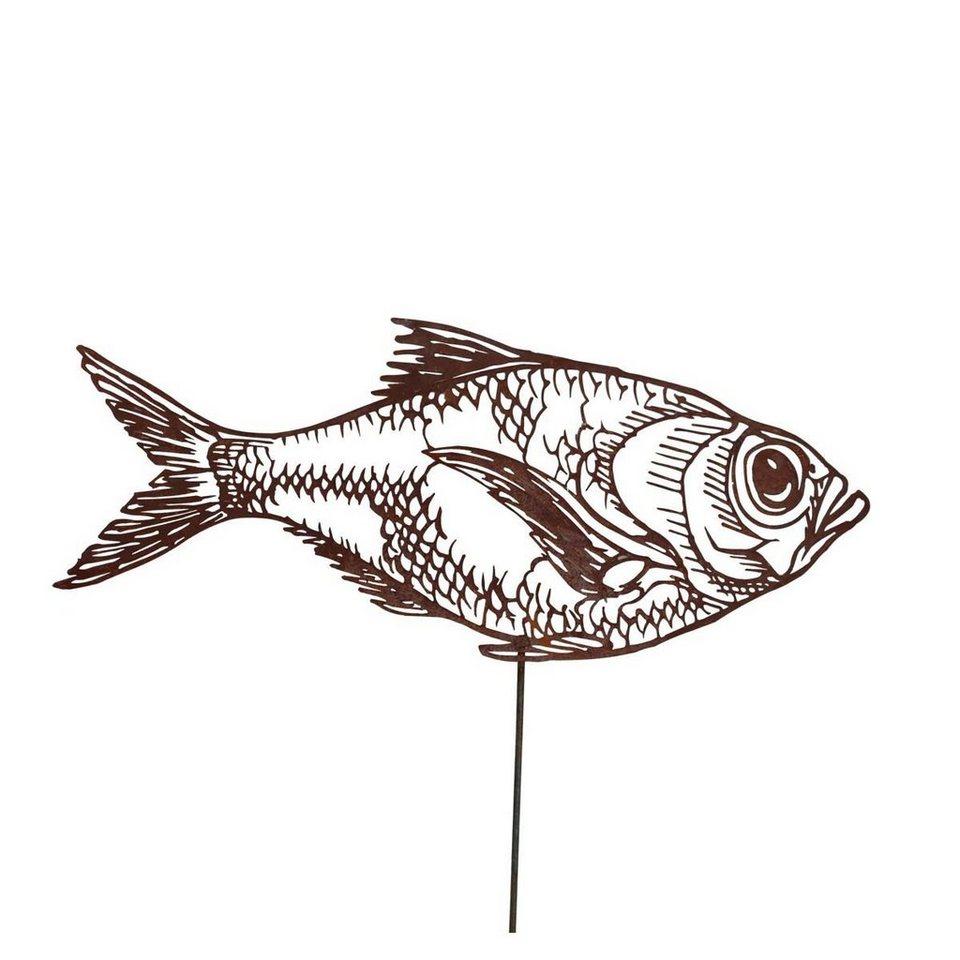 Fisch Mit Y