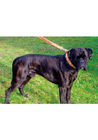 HEIM šuns antkaklis »Buffalo« Echtleder