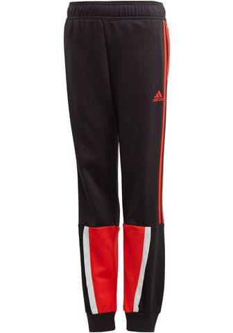 adidas Performance Sportinės kelnės »BOLD«