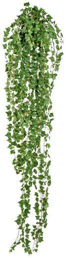 Kunstpflanze »Englische Efeuranke «, Höhe 180 cm