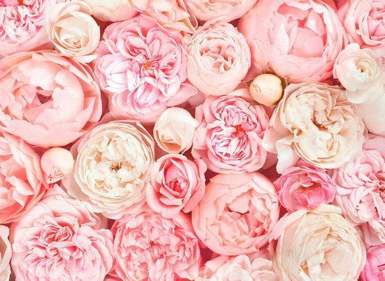living walls Fototapete »Designwalls Roses«, glatt, (5 St)