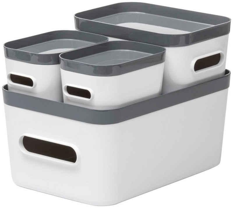 Orthex Aufbewahrungsbox »Smart Store Compact« (Set, 4 Stück)