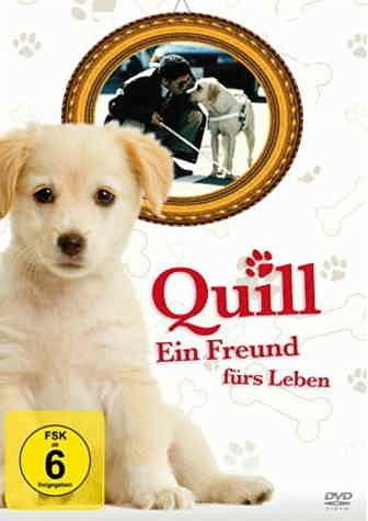 DVD »Quill - Ein Freund für's Leben«