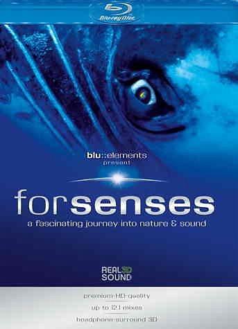 DVD »Forsenses«