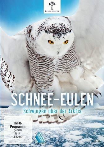DVD »Schnee-Eulen - Schwingen über der Arktis«