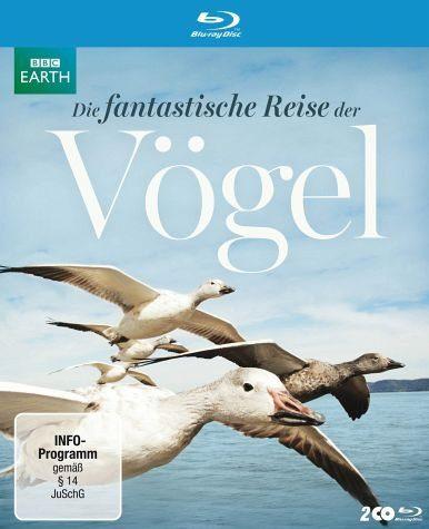 Blu-ray »Die fantastische Reise der Vögel (2 Discs)«