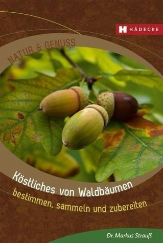 Broschiertes Buch »Köstliches von Waldbäumen«