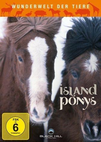 DVD »Wunderwelt der Tiere - Island Ponys«