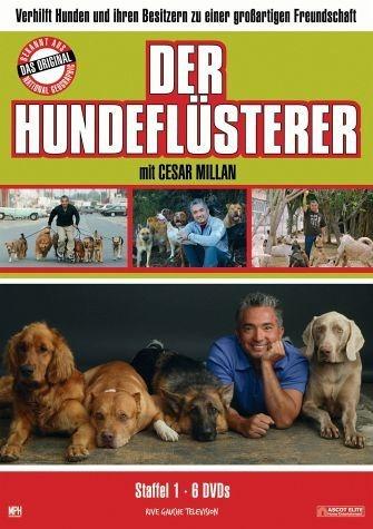 DVD »Der Hundeflüsterer - Season 1«