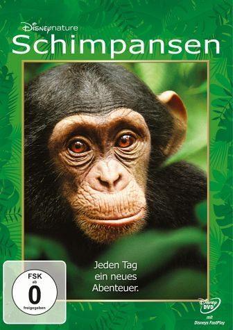 DVD »Schimpansen«