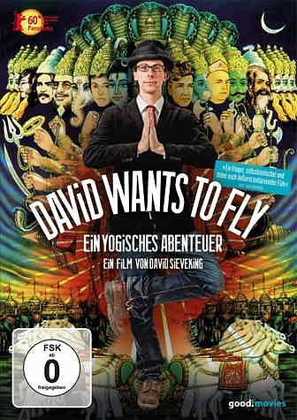 DVD »David Wants to Fly«