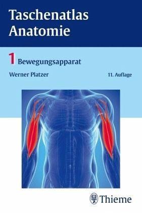 Broschiertes Buch »Taschenatlas Anatomie 01. Bewegungsapparat«