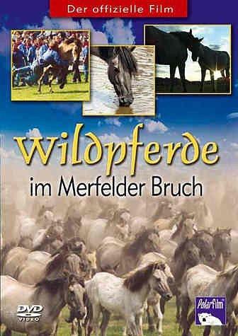 DVD »Wildpferde im Merfelder Bruch«