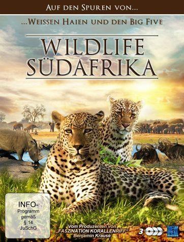 DVD »Wildlife Südafrika - Auf den Spuren von weißen...«