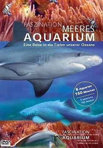 DVD »Faszination Meeres Aquarium«