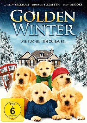 DVD »Golden Winter - Wir suchen ein Zuhause ...«