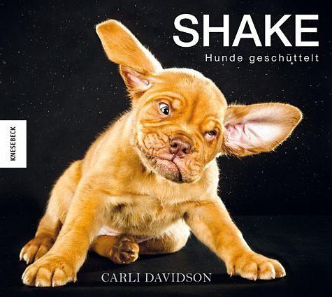 Gebundenes Buch »Shake - Hunde geschüttelt«
