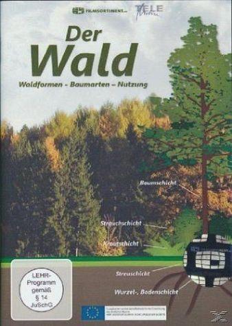 DVD »Der Wald: Waldformen - Baumarten - Nutzung - 2...«