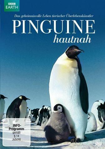 DVD »Pinguine hautnah«