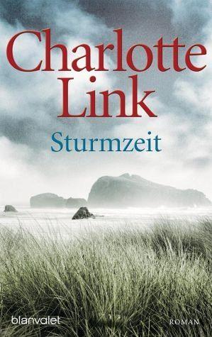 Broschiertes Buch »Sturmzeit / Sturmzeit Bd.1«