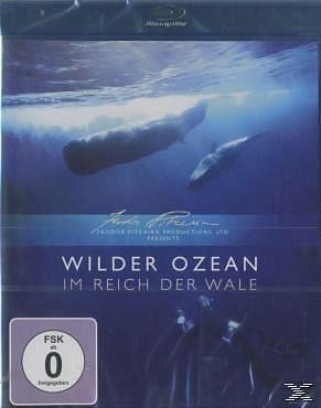 Blu-ray »Wilder Ozean - Im Reich der Wale«