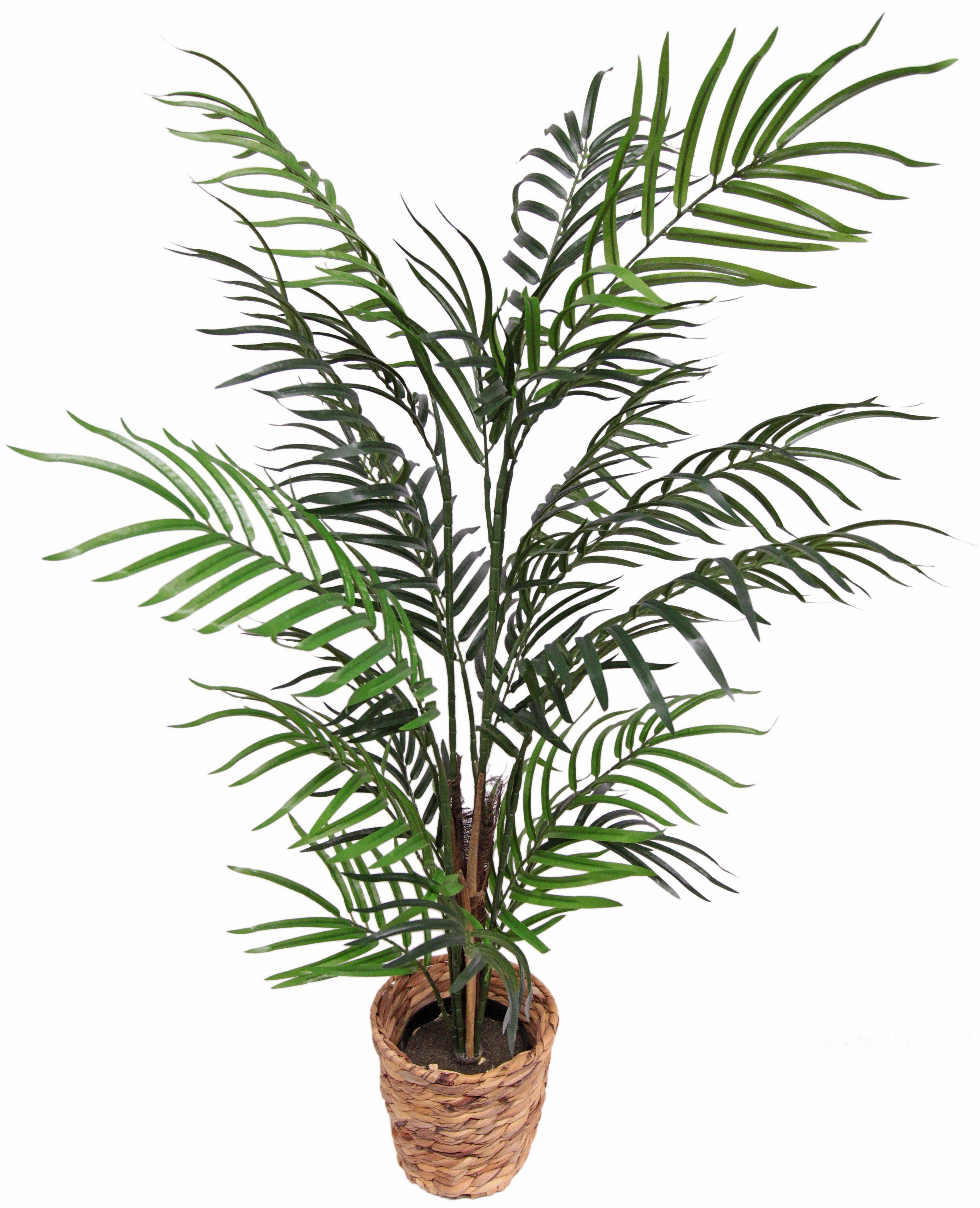 Home affaire Kunstpflanze »Arecapalme«