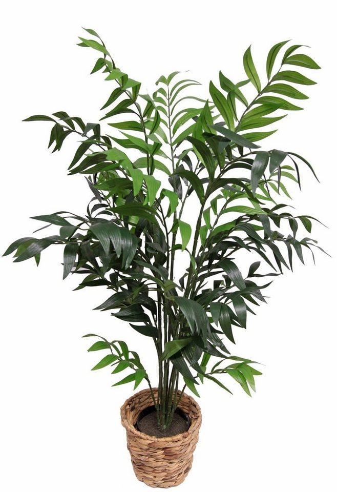 Home affaire Kunstpflanze «Kentiapalme«