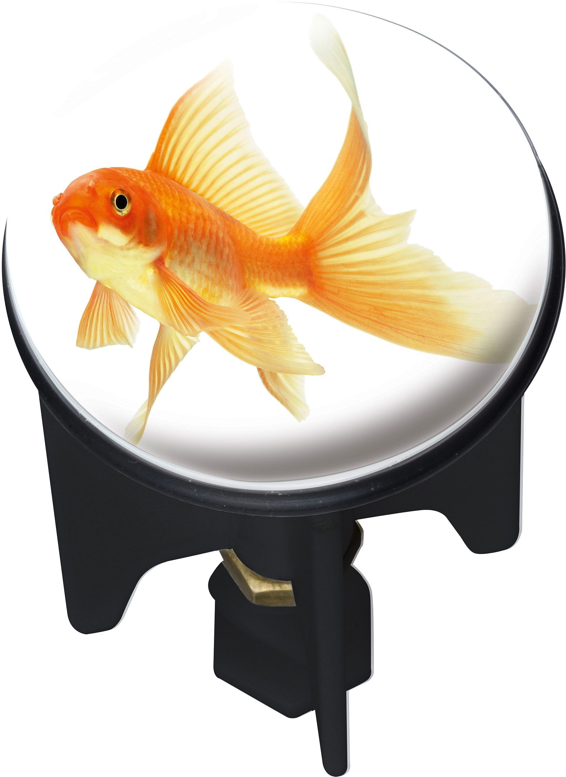 Abfluss-Stopfen, Wenko, »Pluggy Fisch«