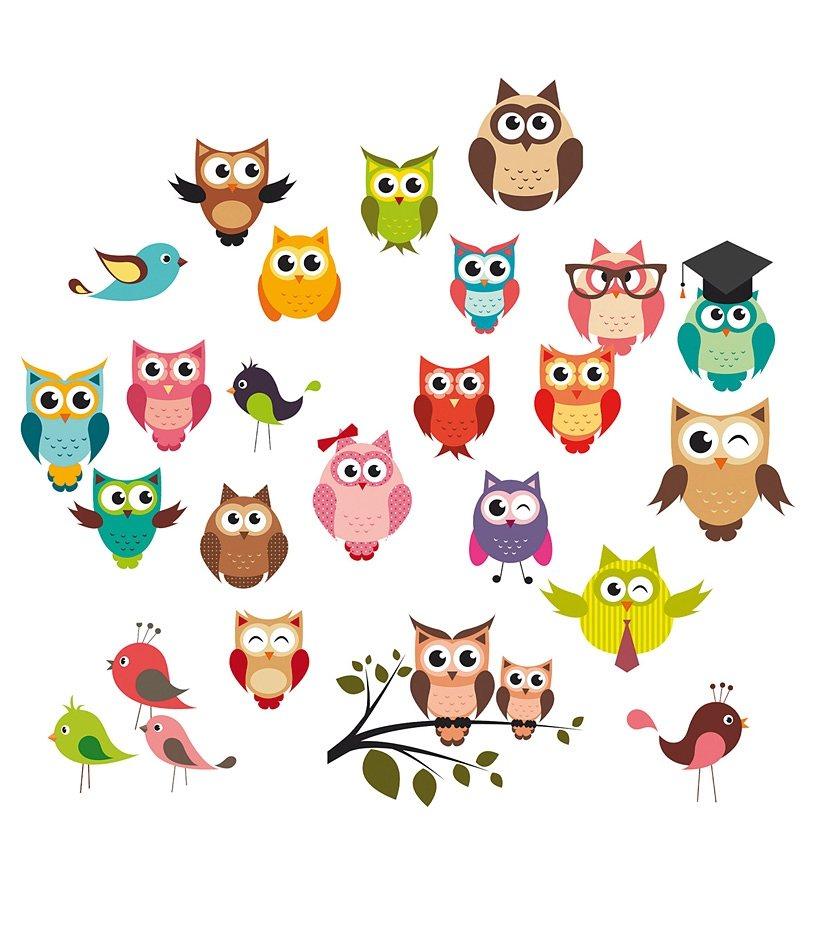Wandsticker, EUROGRAPHICS, »Funny Owls« in bunt