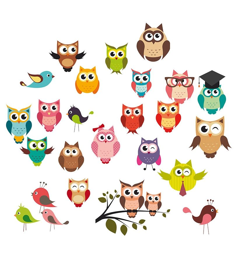 EUROGRAPHICS Wandsticker »Funny Owls«